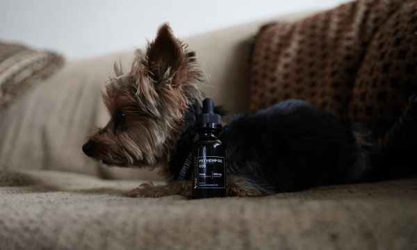 PET CBD OIL 600mg