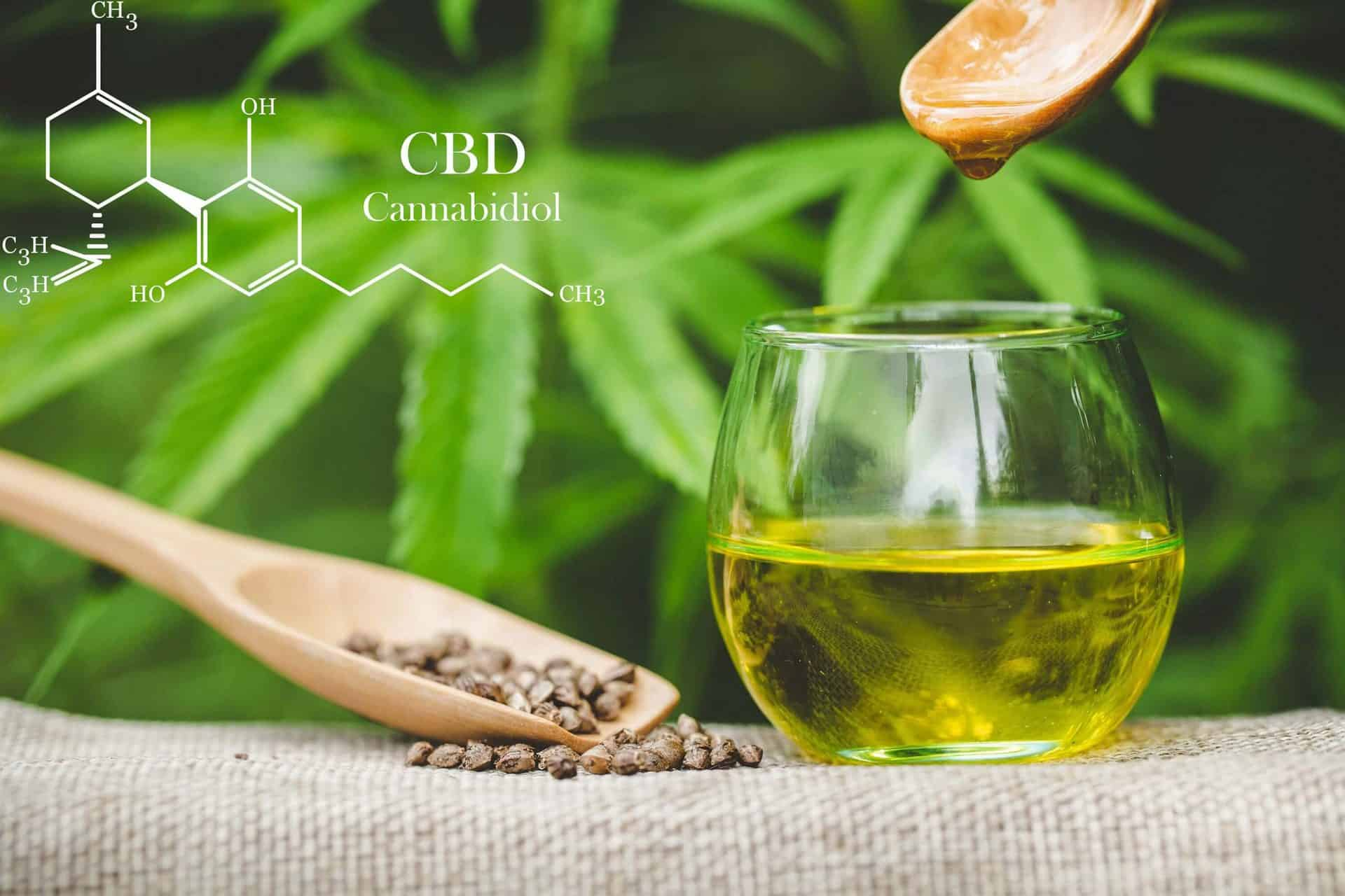 CBD OIL VS Hemp oil: how to know what you are paying for