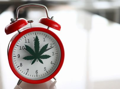 How Long Does CBD Last: Everything You Need To Know